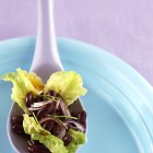 Kidney-Bohnensalat