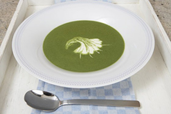 Spinat-Samtsuppe