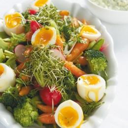 Gemüsesalat  mit Ei