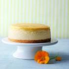 Sunshine White Chocolate Cheesecake