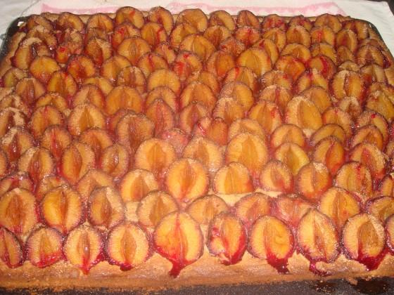 Pflaumenkuchen auf Nus...