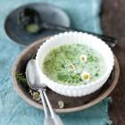 Neunerlei-Wildkräuter-Suppe