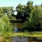 Das rumänische Donaudelta ist die Heimat schmackhafter Speisefische