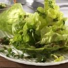 Kopfsalat mit Kerbel