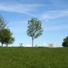 Tolle Ausssicht: Primrose Hill