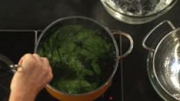 spinat-blanchieren-schritt-03