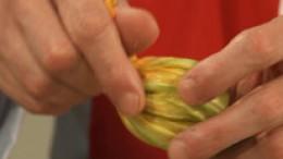 Zucchiniblüten zudrehen Schritt 4