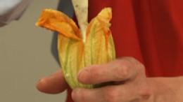 Zucchiniblüten füllen Schritt 3