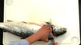 filetieren-rundfisch-schritt2