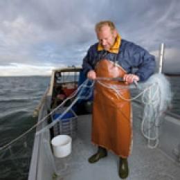 Berufsfischer bei der Arbeit
