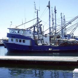 Boote für den Tunfischfang