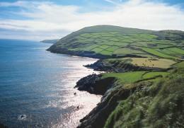 Reiche Natur im Südwesten Irlands
