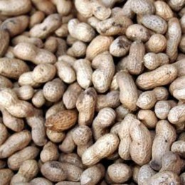 Erdnüsse mit Schalen