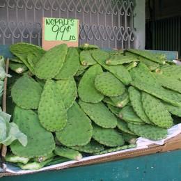 Nopales auf dem Markt