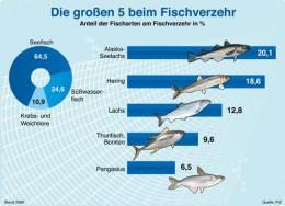 Fisch-Grafik
