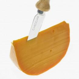 Typisch orange-gelber Cheddar.