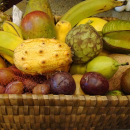 Vor allem exotische Früchte werden in der Instincotherapie empfohlen