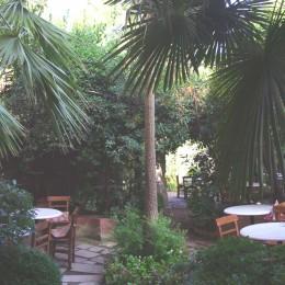 Grüne Oase zum Frühstücken und Relaxen im Hotel Empress Zoe