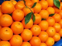 Navel-Orangen