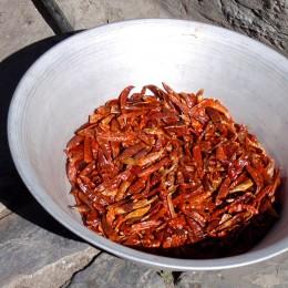 Einige Currypasten werden aus getrockneten Chilis gemacht