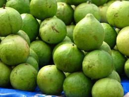 Unreife Guaven