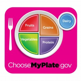 My Plate ersetzt Food Pyramide