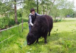 Judith Reinhard mit ihrem Zuchtbullen Ultra Big