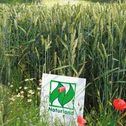 REWE Bio und Naturland. Ein Team für mehr Bio-Qualität.