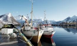 Norwegen - Heimat des Lachses