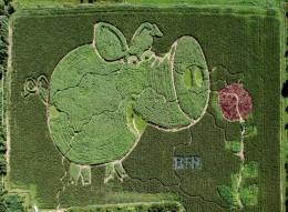 Luftbild vom Schnupperlabyrinth