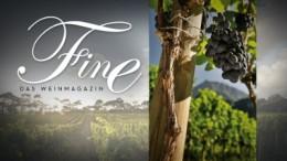 FINE: Das Weinmagazin auf n-tv