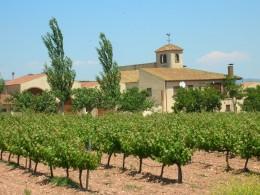 """Das Weingut der Forasters an der """"Ruta del Cister"""""""