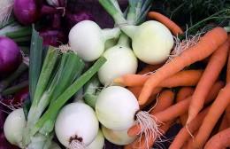 Jahresthema 2012: Ernährung