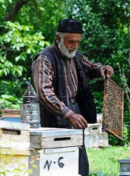 Köstlicher türkischer Honig