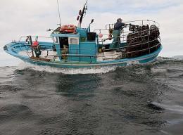 Fischabhängikeitstag: Der letzte Fisch