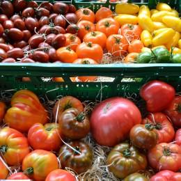 Bunte Tomaten Wochenmarkt