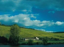 Weindynastien: Familie Schmitt