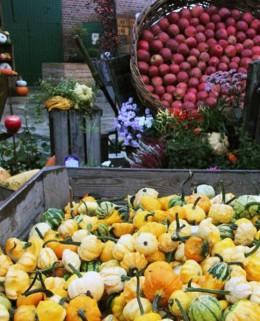 Apfel- und Kürbisfest Obstparadies Schuback