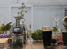 Botanischer Salon: Gesund alt werden