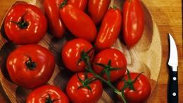 Tomaten gibt es in unterschiedlichen Größen und Formen.