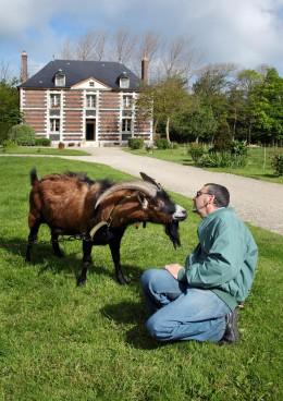 Ziegenzüchter-Bernard-Dherbécourt-mit-seinem-Ziegenbock-Normandie