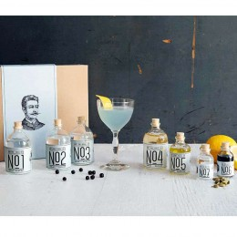 Die Juni Box von Drink-Syndikat: Siegfried Gin