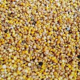 Optisch erinnert Quinoa an Hirse