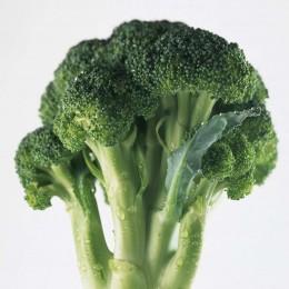 Züchtung von Brokkoli wird nicht patentierbar