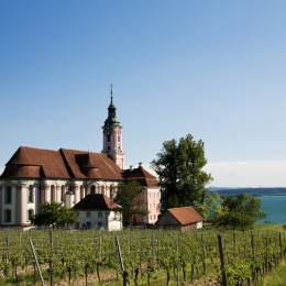 Am Bodensee wachsen wie hier in Birnau interessante Weine