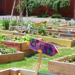 Was nicht passt, wird passend gemacht: Gemüsebeete in Holzkisten.