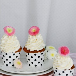 Buttermilch Cupcakes