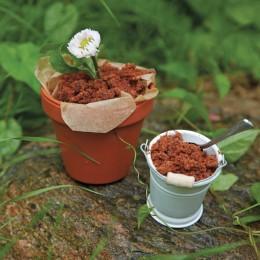 rezept schokopudding pflanze kinder kocht 3 essen. Black Bedroom Furniture Sets. Home Design Ideas