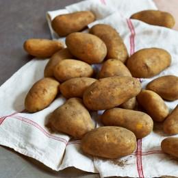 Zutaten-rohe-erdige-Kartoffeln-Kartoffelknödel-mit-Brotwürfeln