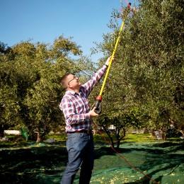 Kay-Henner-bei-der-Olivenernte-kulinarische-Reise-Kreta